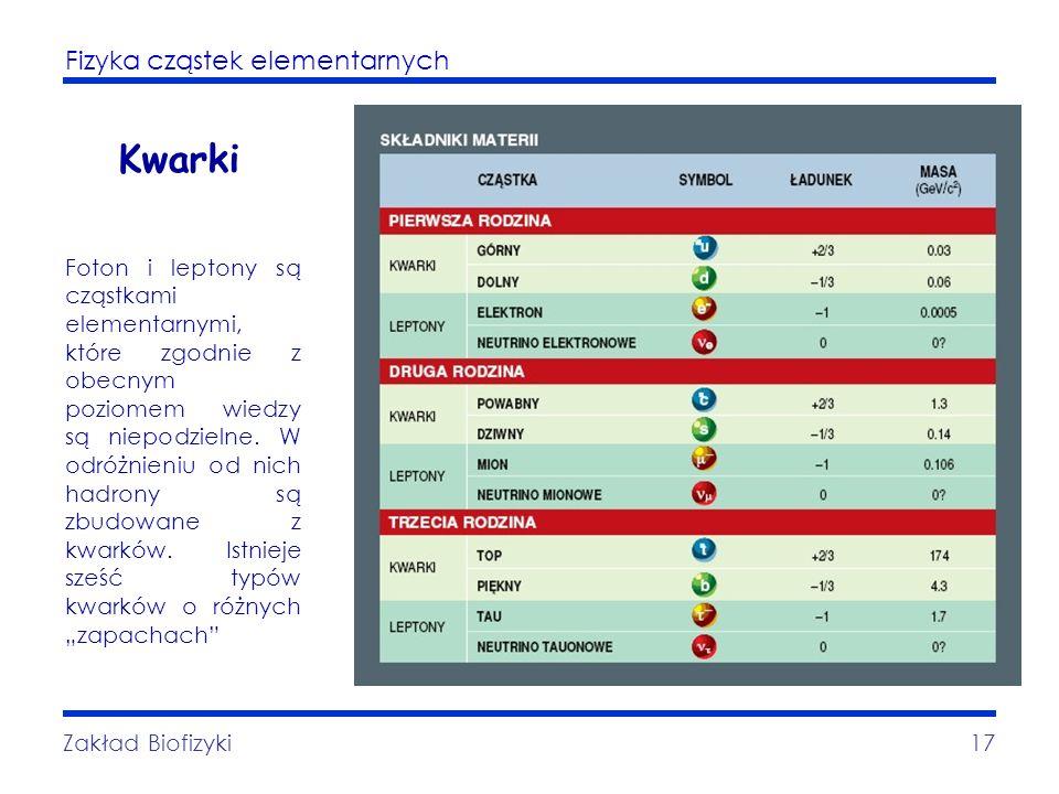 Fizyka cząstek elementarnych Zakład Biofizyki17 Kwarki Foton i leptony są cząstkami elementarnymi, które zgodnie z obecnym poziomem wiedzy są niepodzi
