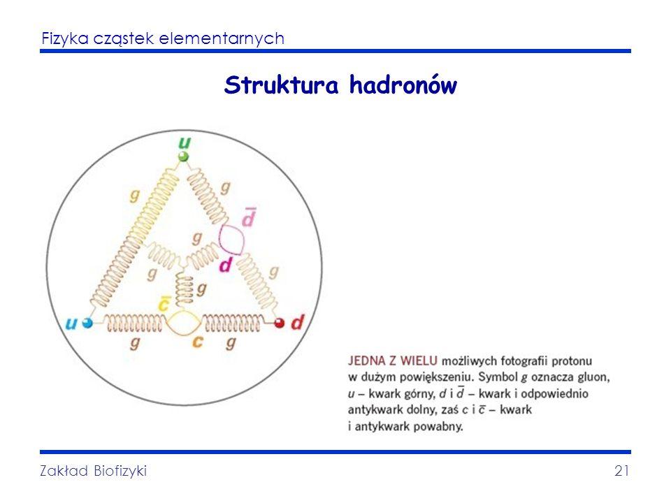 Fizyka cząstek elementarnych Zakład Biofizyki21 Struktura hadronów