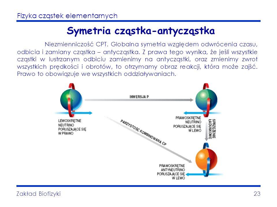 Fizyka cząstek elementarnych Zakład Biofizyki23 Symetria cząstka-antycząstka Niezmienniczość CPT. Globalna symetria względem odwrócenia czasu, odbicia