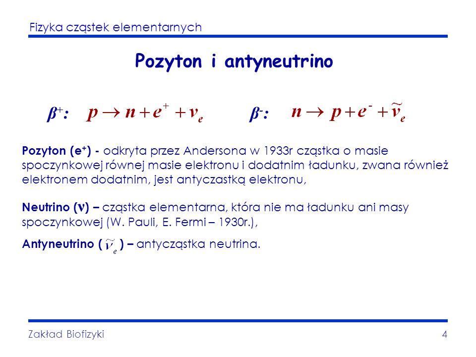 Fizyka cząstek elementarnych Zakład Biofizyki4 Pozyton i antyneutrino β+:β+:β-:β-: Pozyton (e + ) - odkryta przez Andersona w 1933r cząstka o masie sp