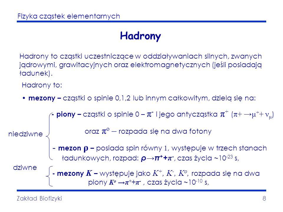 Fizyka cząstek elementarnych Zakład Biofizyki8 Hadrony Hadrony to cząstki uczestniczące w oddziaływaniach silnych, zwanych jądrowymi, grawitacyjnych o