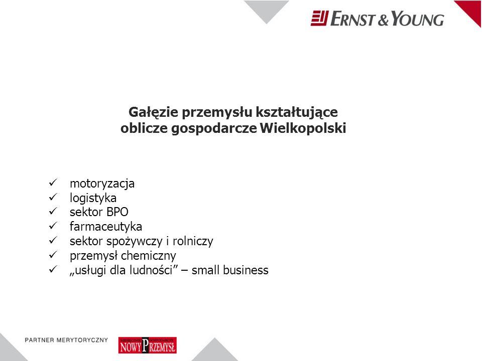 motoryzacja logistyka sektor BPO farmaceutyka sektor spożywczy i rolniczy przemysł chemiczny usługi dla ludności – small business Gałęzie przemysłu kształtujące oblicze gospodarcze Wielkopolski