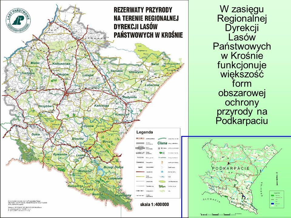 Formy ochrony obszarowej na terenie RDLP w Krośnie
