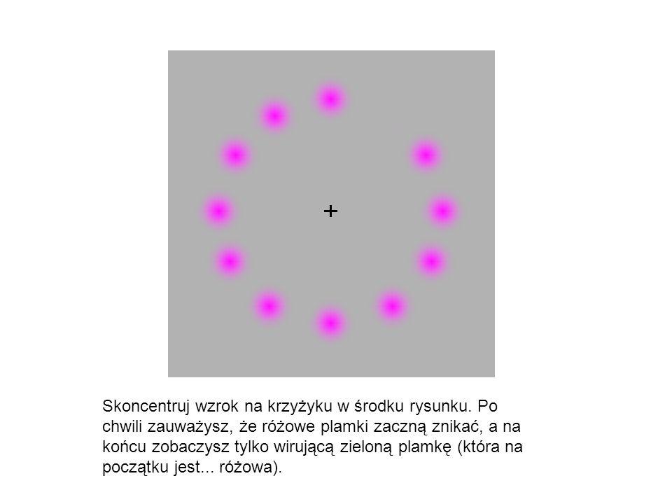 Skoncentruj wzrok na krzyżyku w środku rysunku. Po chwili zauważysz, że różowe plamki zaczną znikać, a na końcu zobaczysz tylko wirującą zieloną plamk