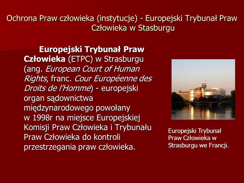 Ochrona Praw człowieka (instytucje) - Europejski Trybunał Praw Człowieka w Stasburgu Europejski Trybunał Praw Człowieka (ETPC) w Strasburgu (ang. Euro