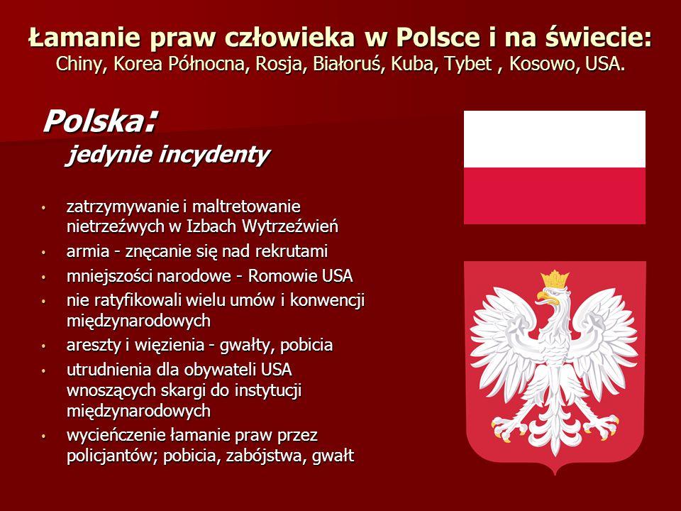 Łamanie praw człowieka w Polsce i na świecie: Chiny, Korea Północna, Rosja, Białoruś, Kuba, Tybet, Kosowo, USA. Polska : jedynie incydenty zatrzymywan