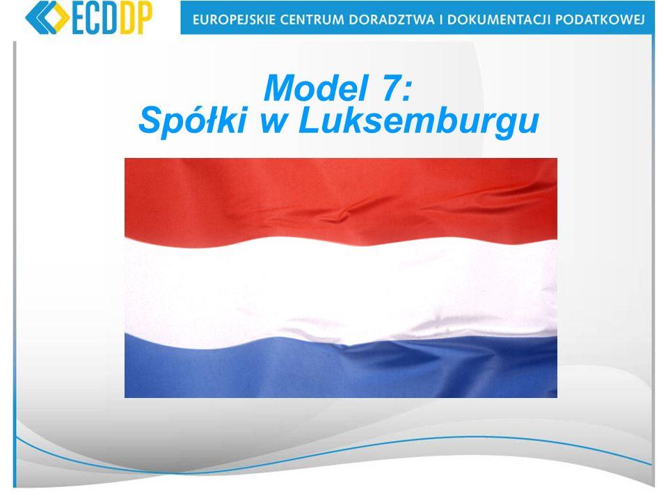 41 Model 7: Spółki w Luksemburgu