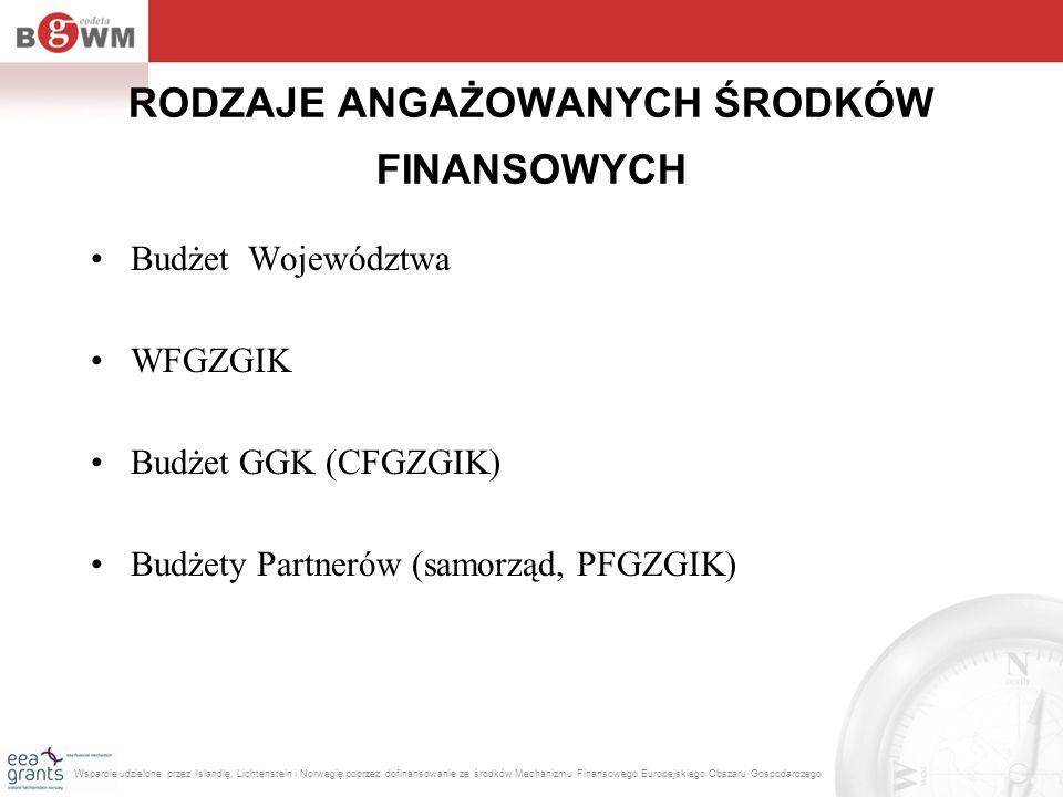 RODZAJE ANGAŻOWANYCH ŚRODKÓW FINANSOWYCH Budżet Województwa WFGZGIK Budżet GGK (CFGZGIK) Budżety Partnerów (samorząd, PFGZGIK) Wsparcie udzielone prze