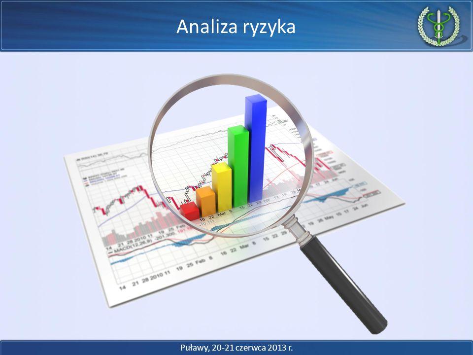 Analiza ryzyka Puławy, 20-21 czerwca 2013 r.