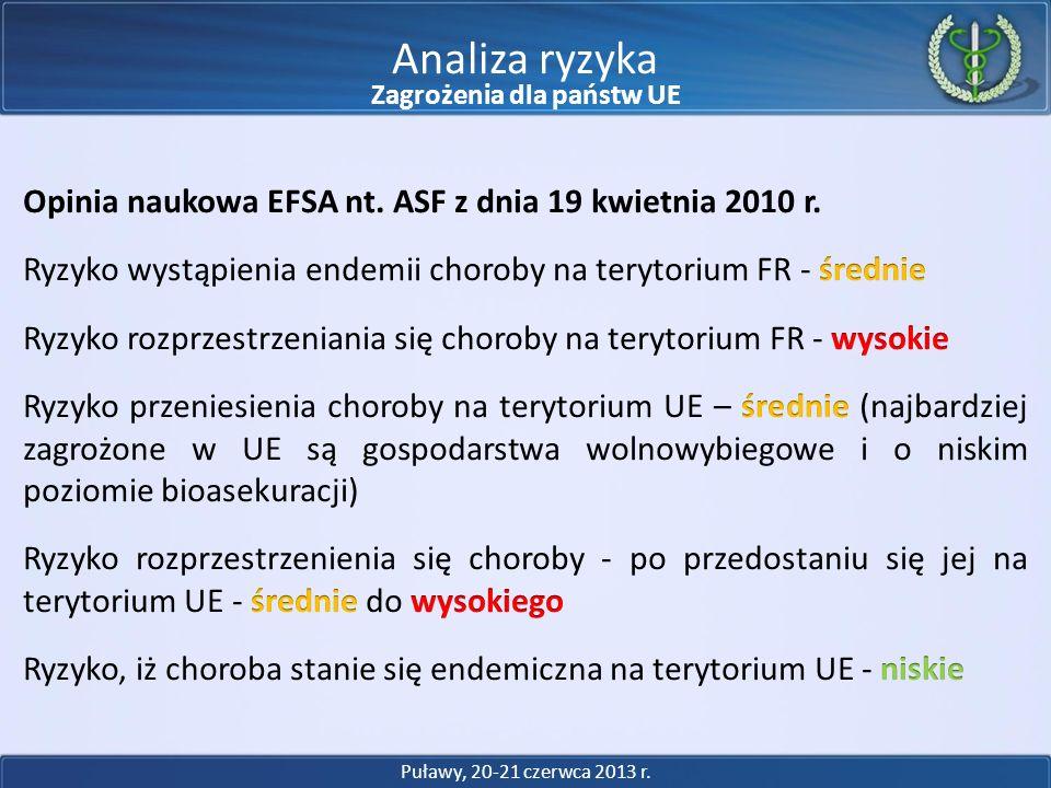 Analiza ryzyka Puławy, 20-21 czerwca 2013 r. Zagrożenia dla państw UE