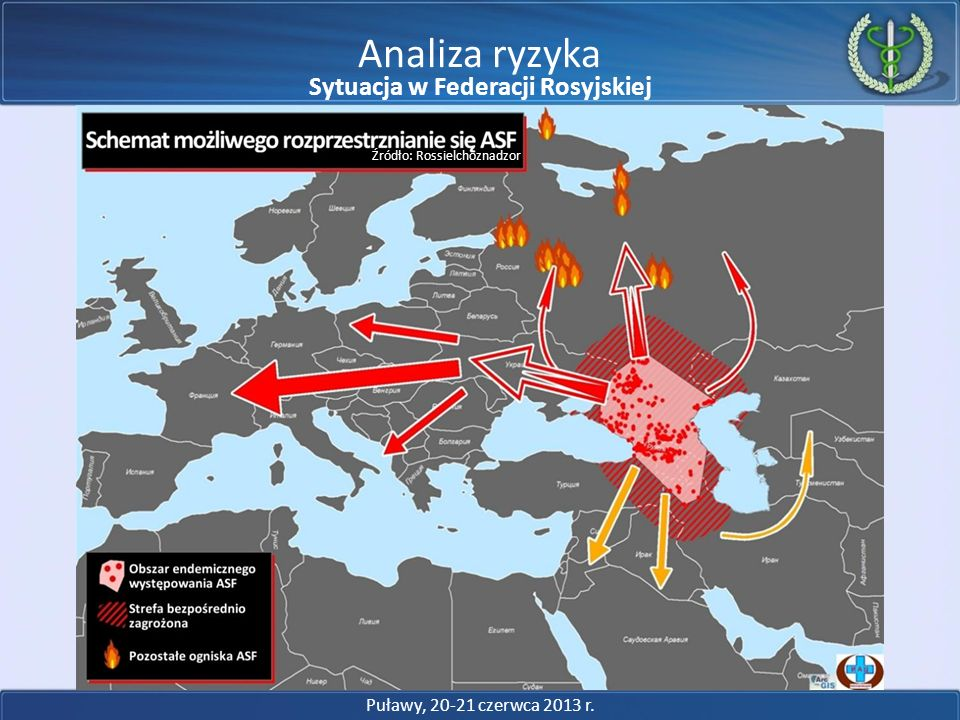 Analiza ryzyka Źródło: Rossielchoznadzor Puławy, 20-21 czerwca 2013 r. Sytuacja w Federacji Rosyjskiej