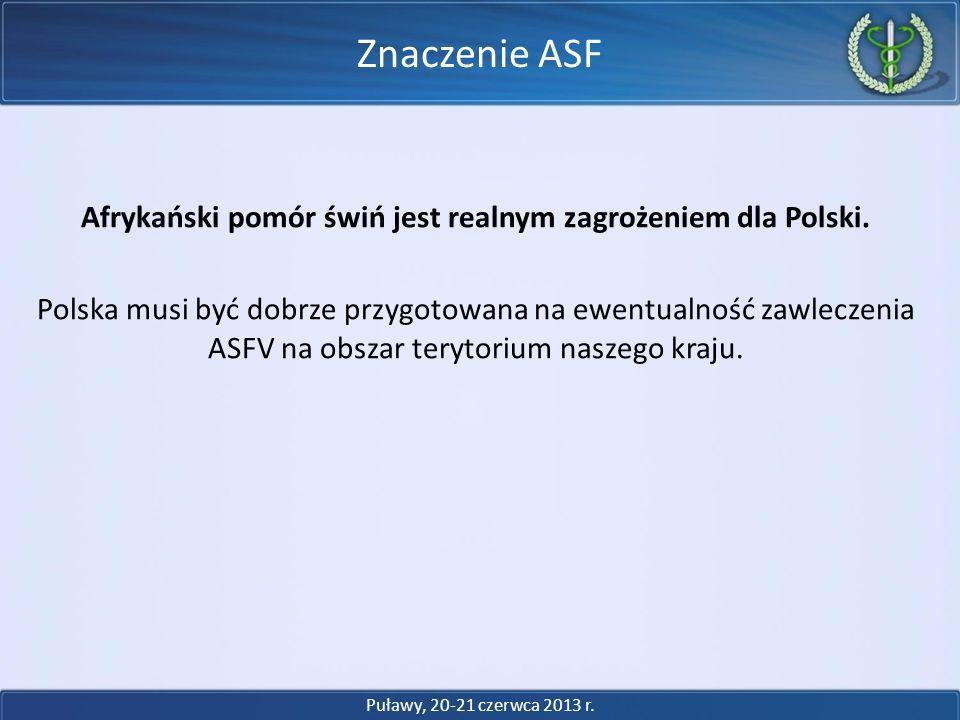 Afrykański pomór świń jest realnym zagrożeniem dla Polski. Polska musi być dobrze przygotowana na ewentualność zawleczenia ASFV na obszar terytorium n