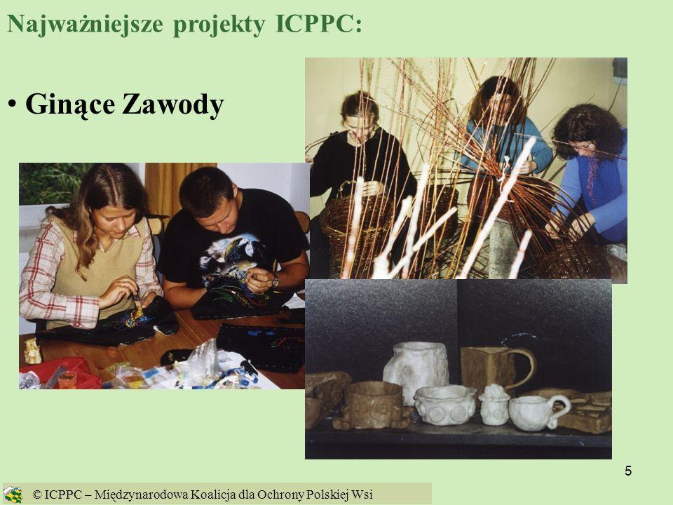 6 EKOCENTRUM ICPPC © ICPPC – Międzynarodowa Koalicja dla Ochrony Polskiej Wsi Najważniejsze projekty ICPPC: