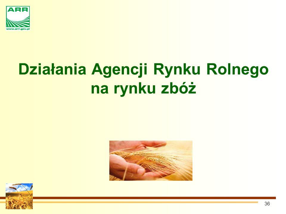 36 Działania Agencji Rynku Rolnego na rynku zbóż