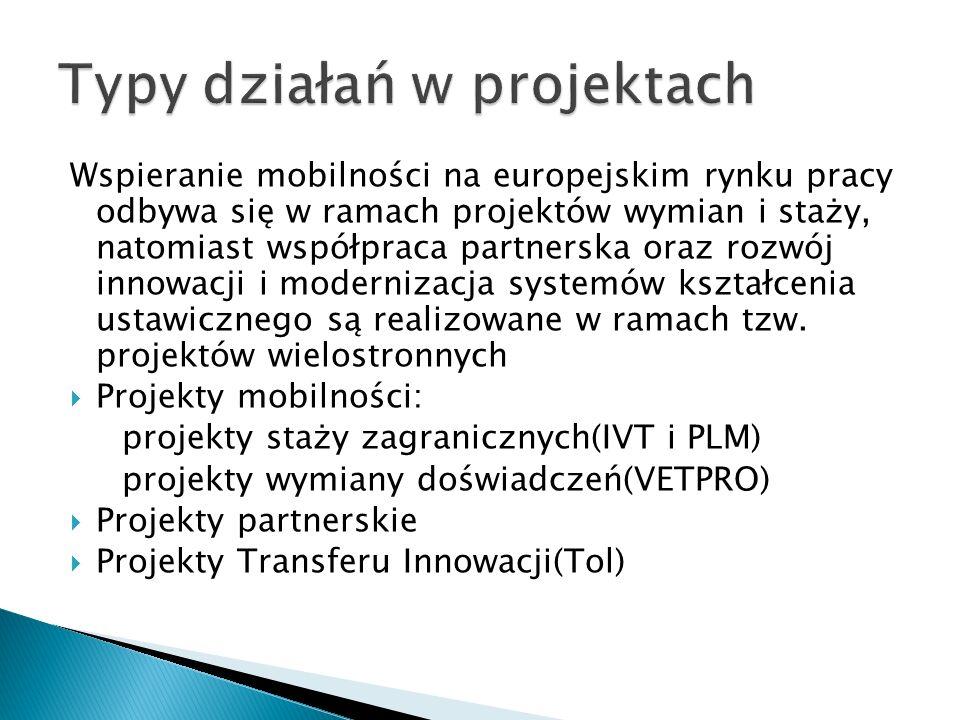 Wspieranie mobilności na europejskim rynku pracy odbywa się w ramach projektów wymian i staży, natomiast współpraca partnerska oraz rozwój innowacji i modernizacja systemów kształcenia ustawicznego są realizowane w ramach tzw.