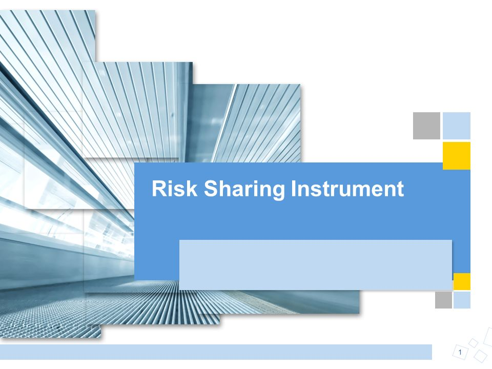 1 Risk Sharing Instrument