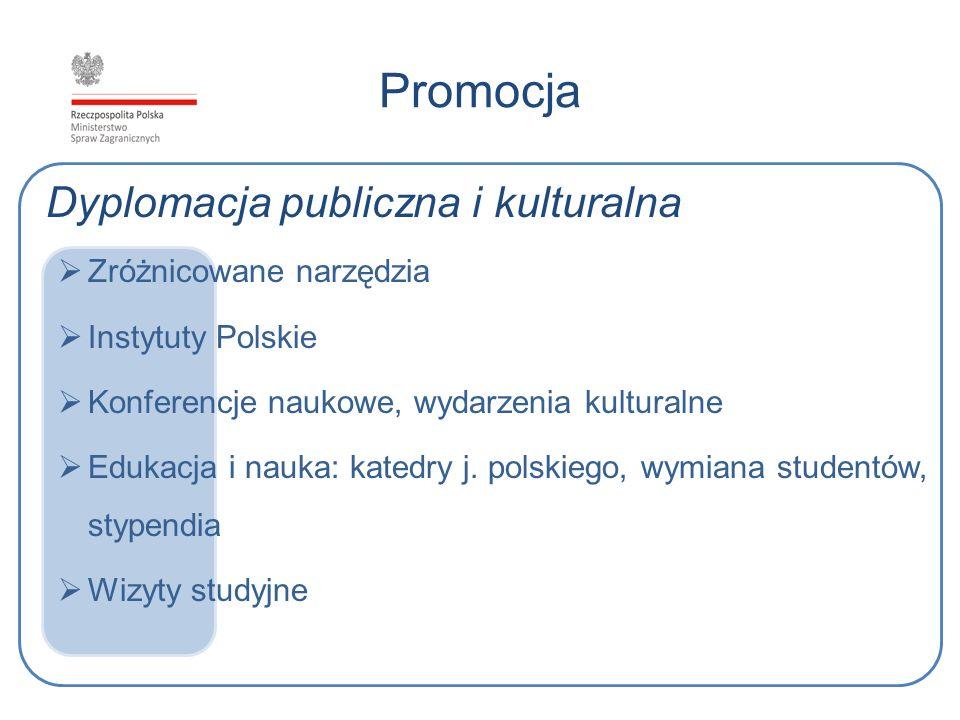 Promocja Dyplomacja publiczna i kulturalna Zróżnicowane narzędzia Instytuty Polskie Konferencje naukowe, wydarzenia kulturalne Edukacja i nauka: kated
