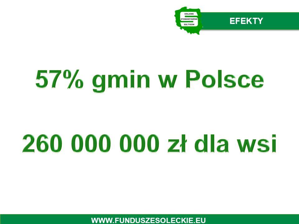 EFEKTY WWW.FUNDUSZESOLECKIE.EU
