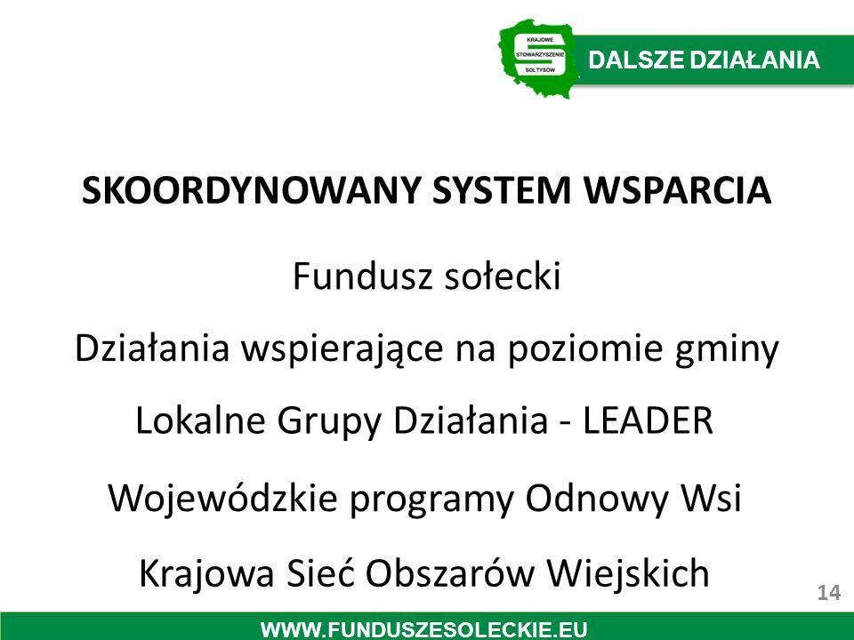 SKOORDYNOWANY SYSTEM WSPARCIA Fundusz sołecki Działania wspierające na poziomie gminy Lokalne Grupy Działania - LEADER Wojewódzkie programy Odnowy Wsi