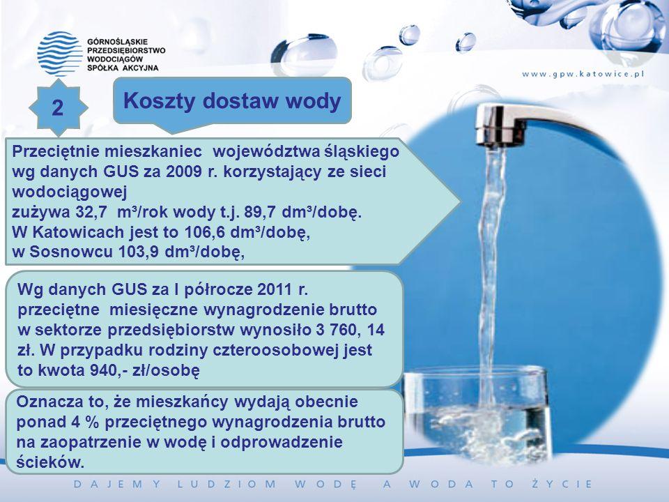 Przeciętnie mieszkaniec województwa śląskiego wg danych GUS za 2009 r. korzystający ze sieci wodociągowej zużywa 32,7 m³/rok wody t.j. 89,7 dm³/dobę.