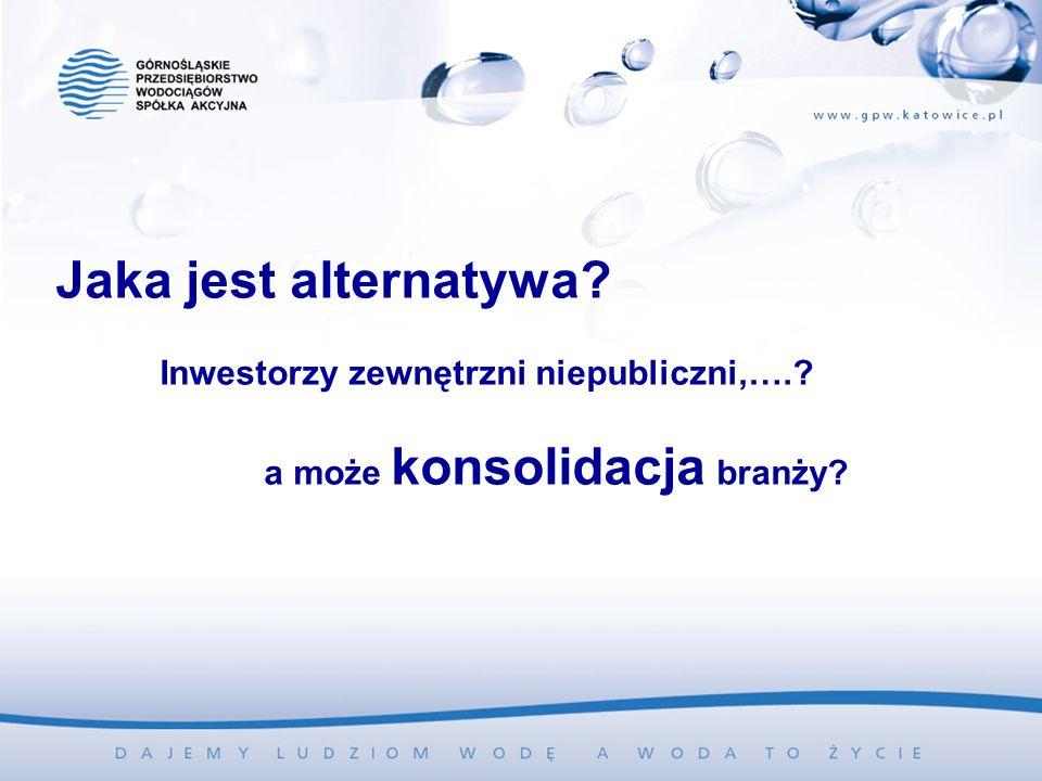 Jaka jest alternatywa? Inwestorzy zewnętrzni niepubliczni,….? a może konsolidacja branży?