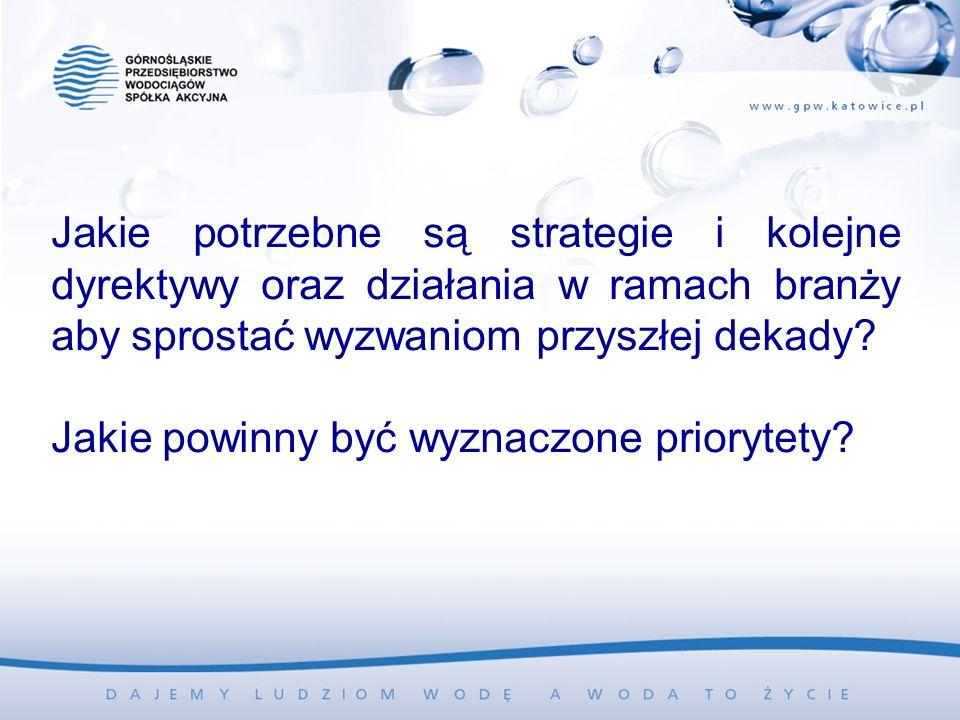 Jakie potrzebne są strategie i kolejne dyrektywy oraz działania w ramach branży aby sprostać wyzwaniom przyszłej dekady.