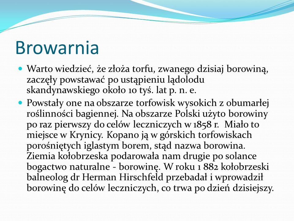 Solanka Historia Kołobrzegu zaczyna się od solanki.