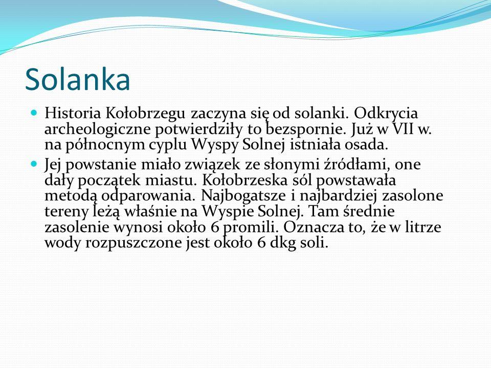 Solanka Historia Kołobrzegu zaczyna się od solanki. Odkrycia archeologiczne potwierdziły to bezspornie. Już w VII w. na północnym cyplu Wyspy Solnej i