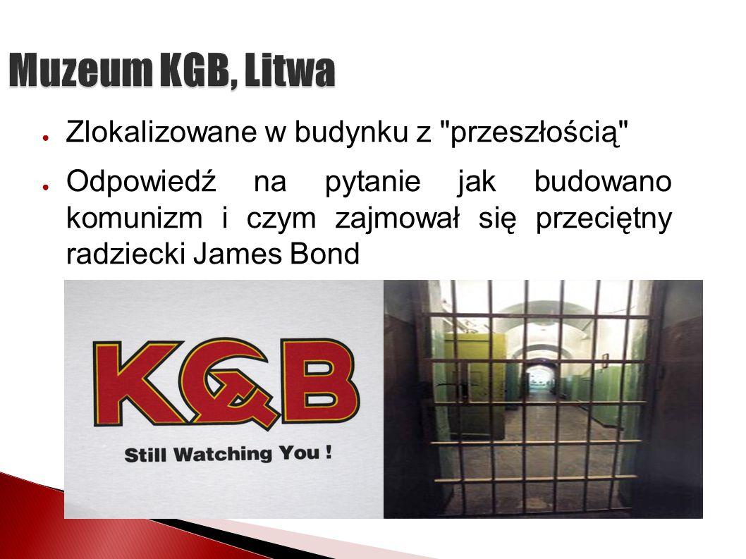 Muzeum KGB, Litwa Zlokalizowane w budynku z