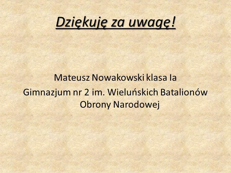 Dziękuję za uwagę.Mateusz Nowakowski klasa Ia Gimnazjum nr 2 im.