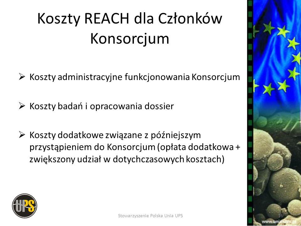 Koszty REACH dla Członków Konsorcjum Koszty administracyjne funkcjonowania Konsorcjum Koszty badań i opracowania dossier Koszty dodatkowe związane z p
