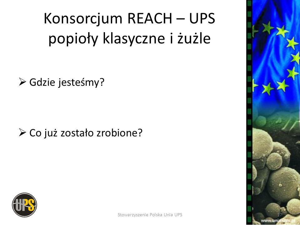 Konsorcjum REACH – UPS popioły klasyczne i żużle Gdzie jesteśmy? Co już zostało zrobione? 17Stowarzyszenie Polska Unia UPS
