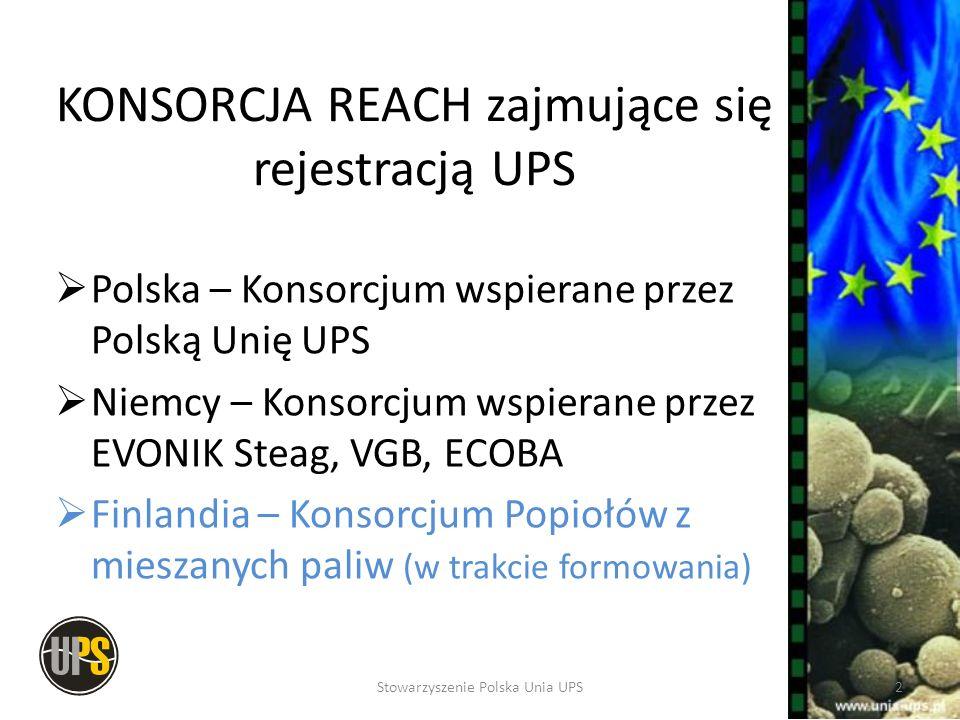 Polskie Konsorcjum REACH Rejestracja UPS w REACH popiół lotny żużel popioły oraz żużle z kotłów fluidalnych SDA – produkt półsuchego odsiarczania spalin Liczba Członków Konsorcjum 111 3Stowarzyszenie Polska Unia UPS