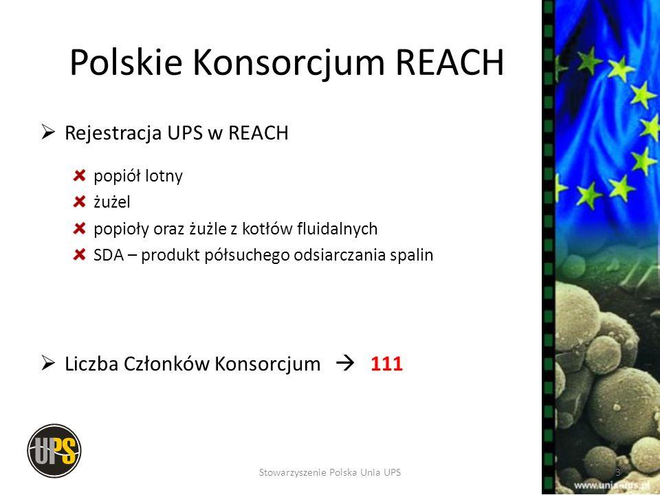 Polskie Konsorcjum REACH Rejestracja UPS w REACH popiół lotny żużel popioły oraz żużle z kotłów fluidalnych SDA – produkt półsuchego odsiarczania spal