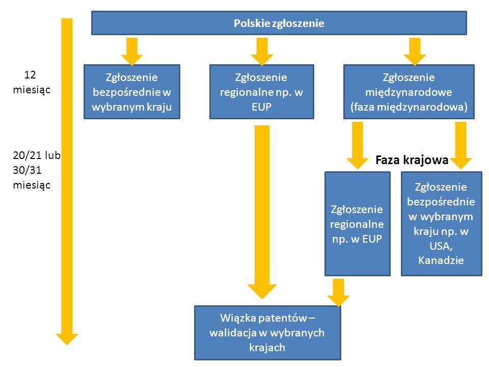 Polskie zgłoszenie 12 miesiąc Zgłoszenie bezpośrednie w wybranym kraju Zgłoszenie regionalne np. w EUP Zgłoszenie międzynarodowe (faza międzynarodowa)