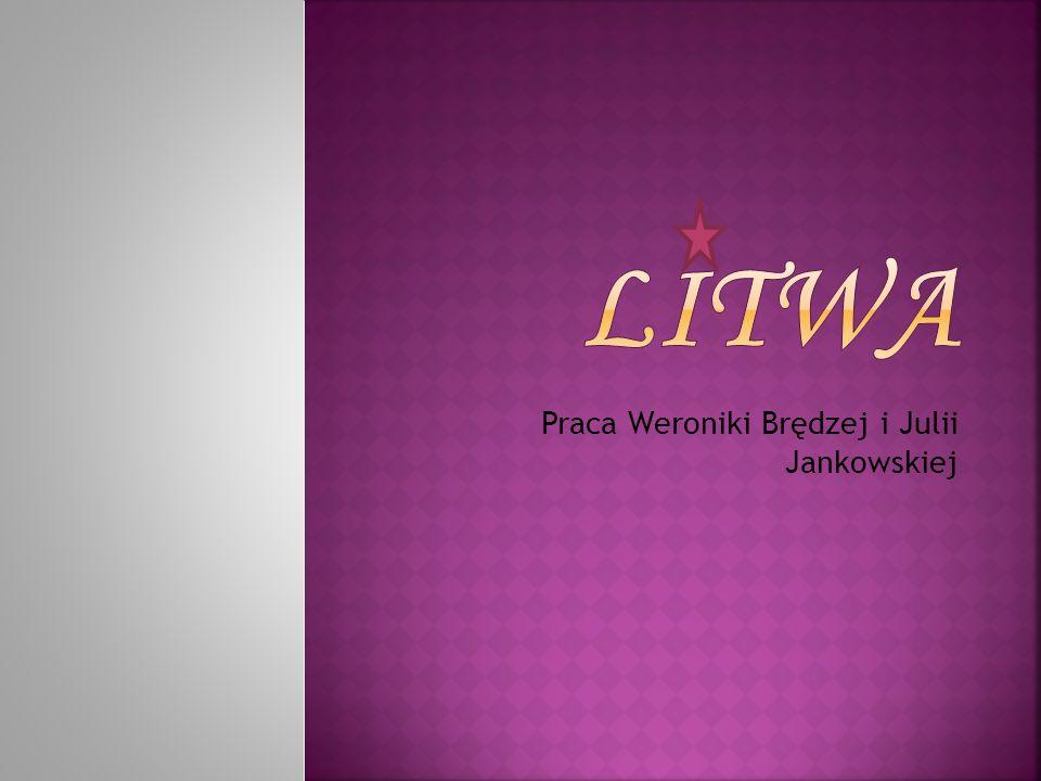 Praca Weroniki Brędzej i Julii Jankowskiej
