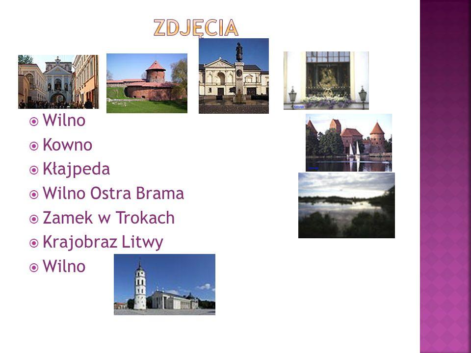 Podaj pełną nazwę Litwy. Wymień państwa graniczące z Litwą. W którym regionie Europy leży Litwa? Wymień jedną z tradycyjnych potraw litwijskich. Jakie