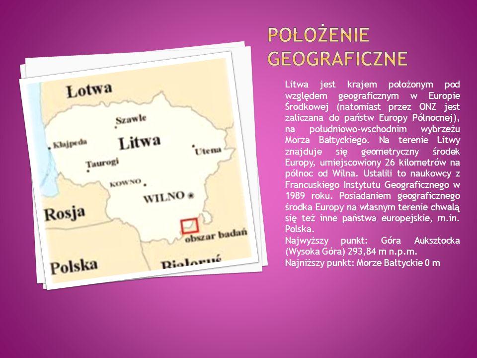 Litwa jest krajem położonym pod względem geograficznym w Europie Środkowej (natomiast przez ONZ jest zaliczana do państw Europy Północnej), na południowo-wschodnim wybrzeżu Morza Bałtyckiego.