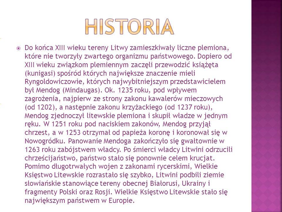 Do końca XIII wieku tereny Litwy zamieszkiwały liczne plemiona, które nie tworzyły zwartego organizmu państwowego.