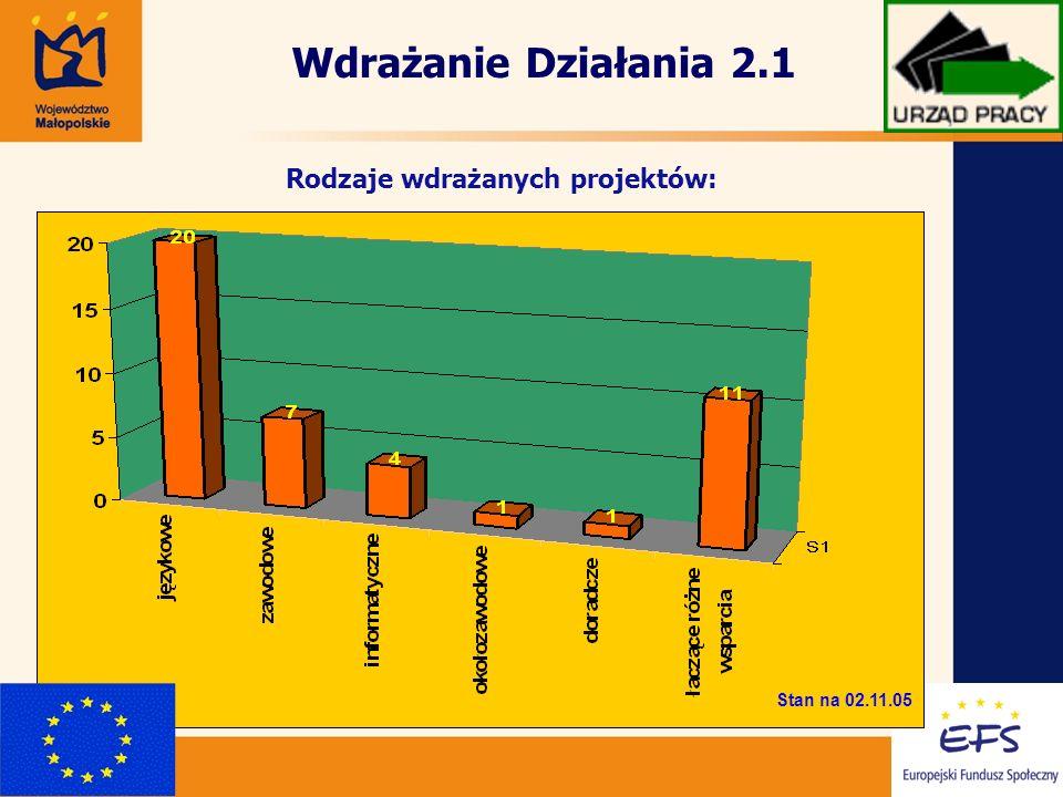 Rodzaje wdrażanych projektów: Stan na 02.11.05 Wdrażanie Działania 2.1