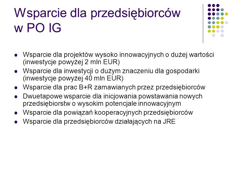 Wsparcie dla przedsiębiorców w PO IG Wsparcie dla projektów wysoko innowacyjnych o dużej wartości (inwestycje powyżej 2 mln EUR) Wsparcie dla inwestyc