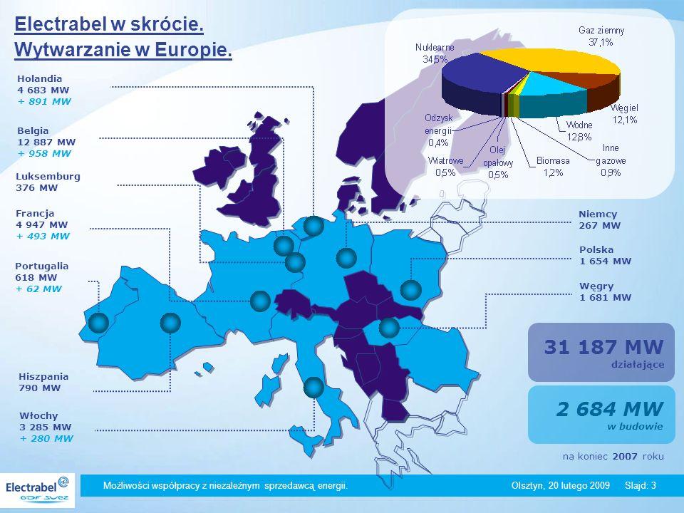 Możliwości współpracy z niezależnym sprzedawcą energii. Olsztyn, 20 lutego 2009Slajd: 3 Holandia 4 683 MW + 891 MW Belgia 12 887 MW + 958 MW Francja 4