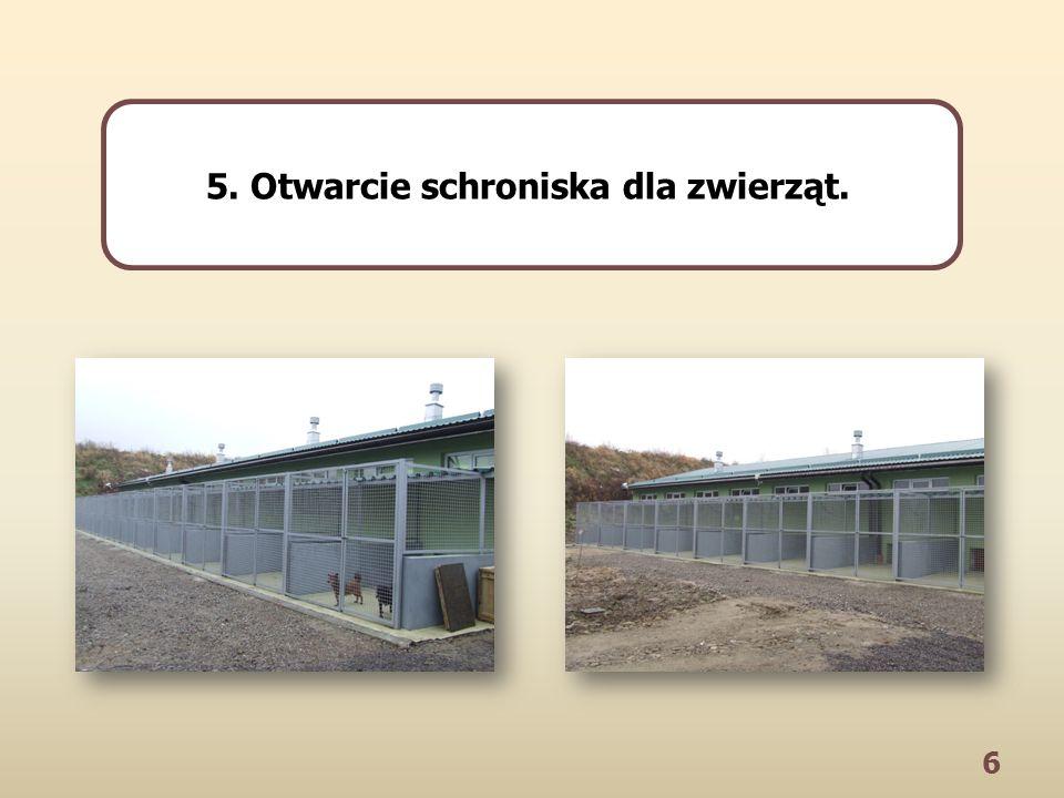 6 5. Otwarcie schroniska dla zwierząt.