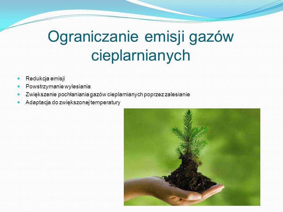 Ograniczanie emisji gazów cieplarnianych Redukcja emisji Powstrzymanie wylesiania Zwiększenie pochłaniania gazów cieplarnianych poprzez zalesianie Ada