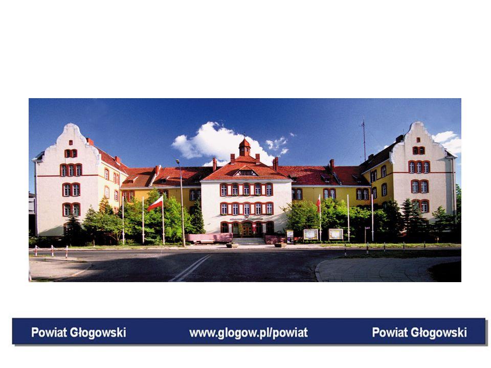 PODSUMOWANIE PROJEKTU: Rozwój społeczeństwa informacyjnego w Powiecie Głogowskim w oparciu o założenia Regionalnej Strategii Innowacji