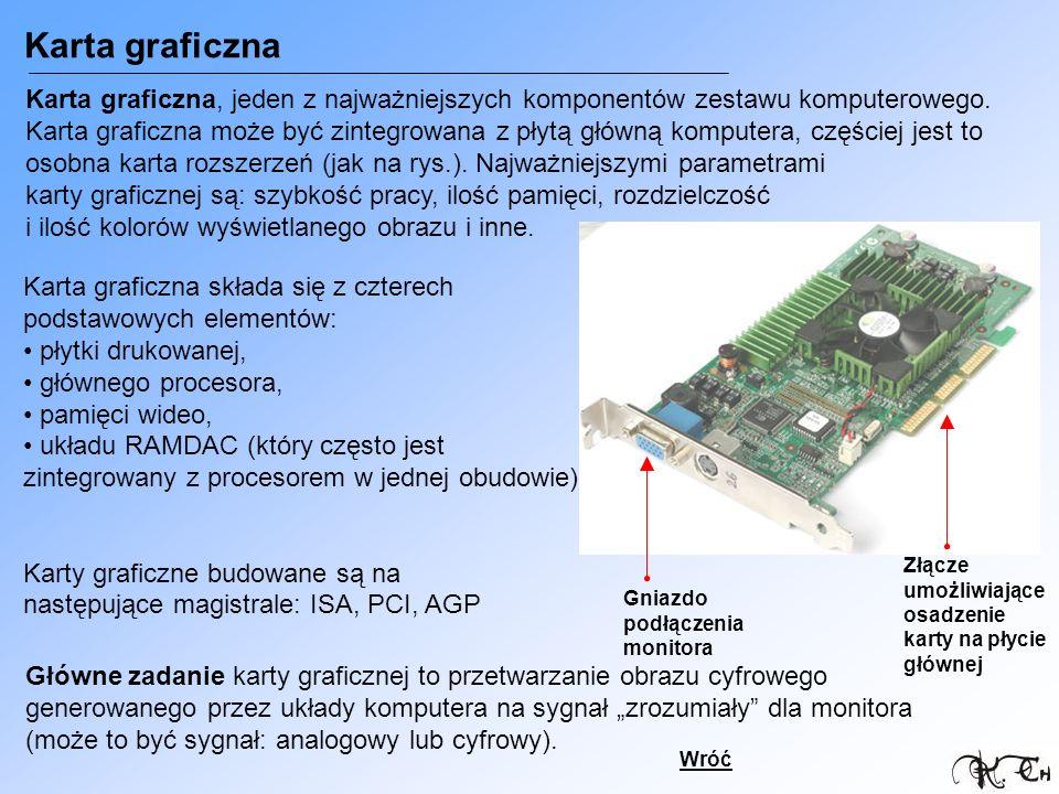 Karta graficzna Złącze umożliwiające osadzenie karty na płycie głównej Gniazdo podłączenia monitora Karta graficzna, jeden z najważniejszych komponent