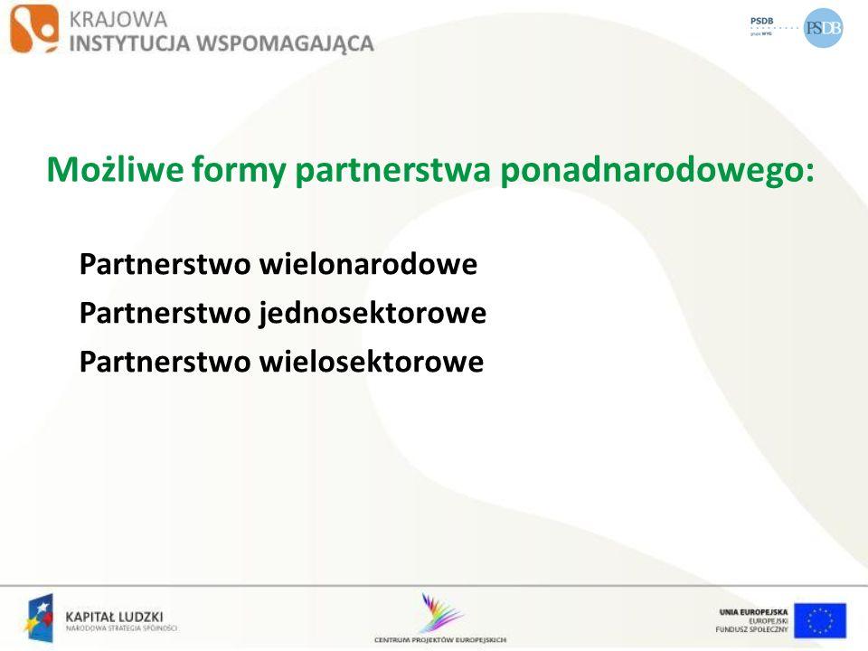Możliwe formy partnerstwa ponadnarodowego: Partnerstwo wielonarodowe Partnerstwo jednosektorowe Partnerstwo wielosektorowe