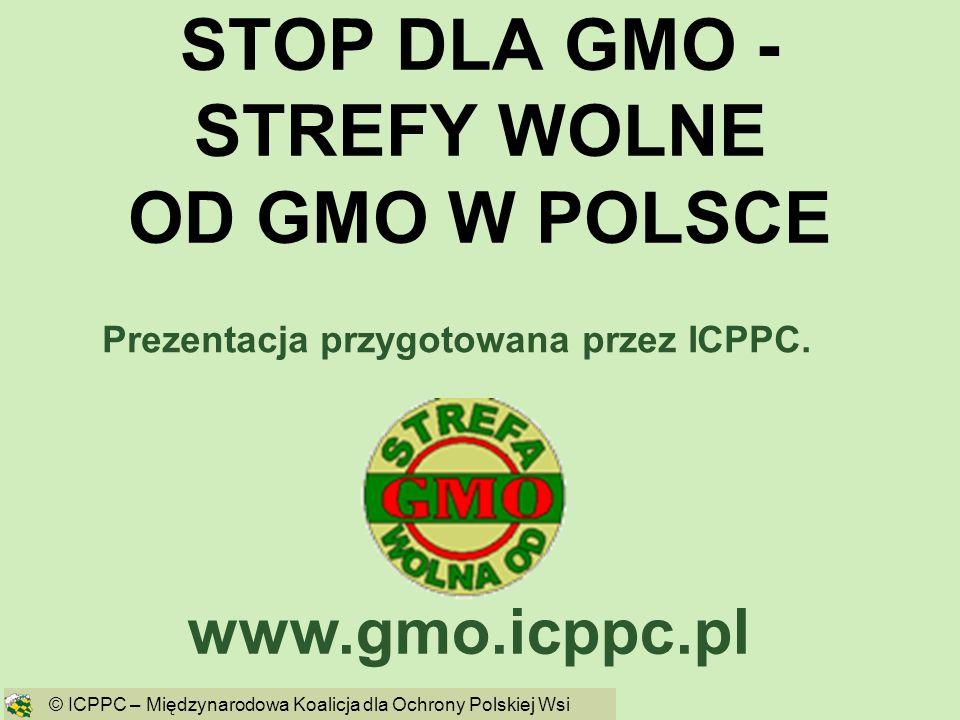 STOP DLA GMO - STREFY WOLNE OD GMO W POLSCE www.gmo.icppc.pl © ICPPC – Międzynarodowa Koalicja dla Ochrony Polskiej Wsi Prezentacja przygotowana przez
