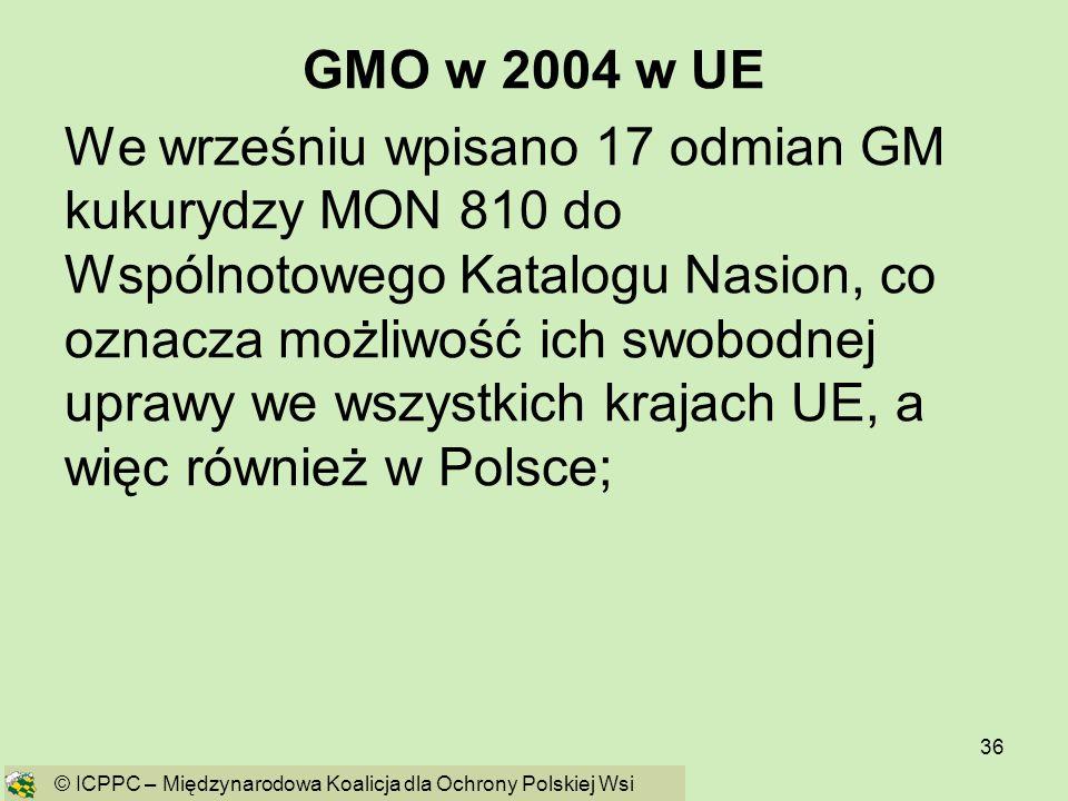 36 GMO w 2004 w UE We wrześniu wpisano 17 odmian GM kukurydzy MON 810 do Wspólnotowego Katalogu Nasion, co oznacza możliwość ich swobodnej uprawy we w