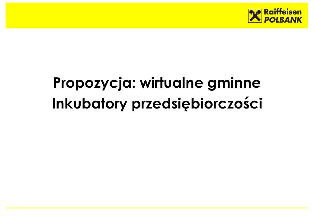 Propozycja: wirtualne gminne Inkubatory przedsiębiorczości